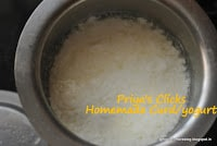 curd-at-home-priyascurrynation